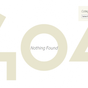 What is a 404 Page